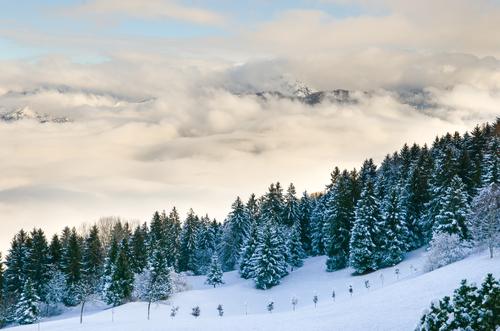 Pendio Di Montagna Nella Neve Sfondi Gratuiti