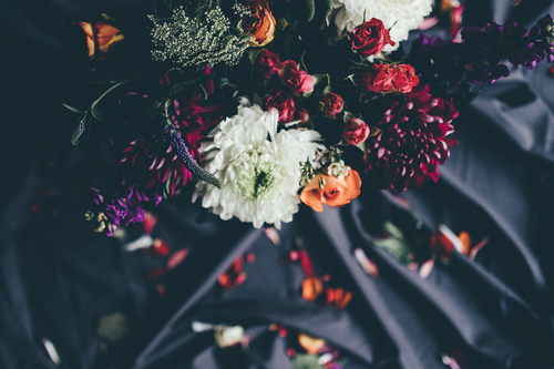 Flowers with falling petals