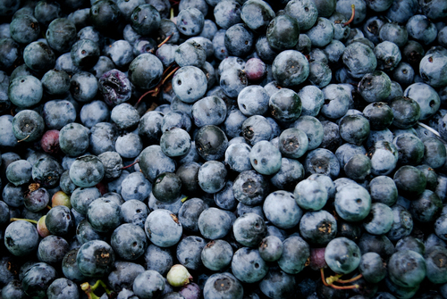 Blueberries pile