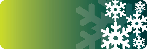 Green banner with snowflakes
