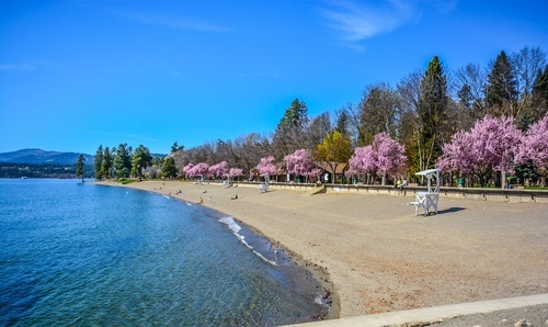 Lake and the beach in spring