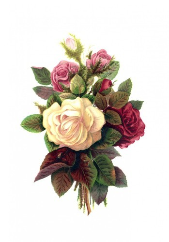 çiçek Buketi Boyama Kamuya Açık Fotoğraflar