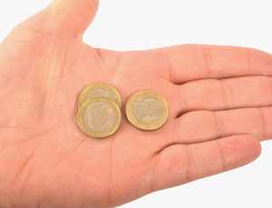 Euro coins in a palm