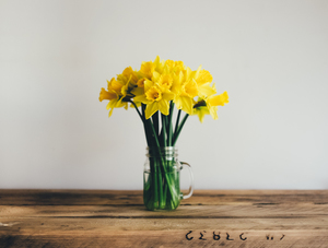 Yellow lilles in vase
