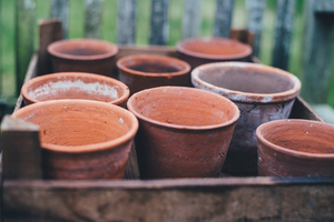 Empty orange pots
