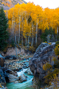 Aspen's creek, United States