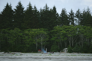 Camping in Bamfield, Canada