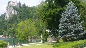 Walking area in Bled