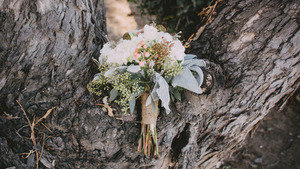 Bouquet in a tree