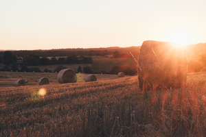Bourdeilles pastures and sunset