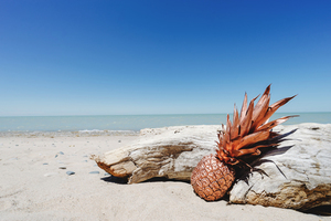 Bronze pineapple at the beach