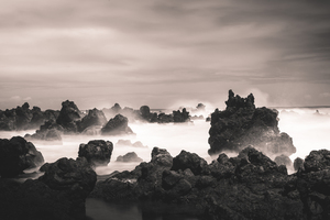 Sea rocks with fog