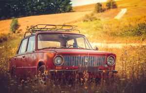 Car in the field