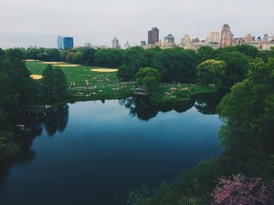 Lake and forest in Central Park, New York, United States (Unsplash 7EF9sOAH5gk).jpg