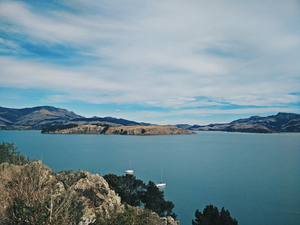 Nature in Christchurch, New Zealand