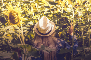 Girl in sunflower fields