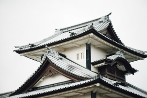 Japanese rooftops