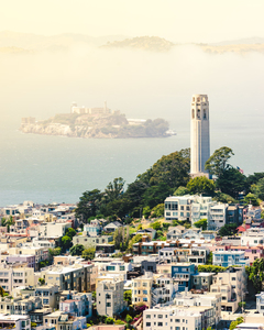Coit Tower from above