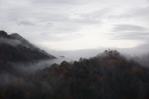 Dark wooded hills in fog
