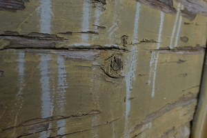 Part of an old wooden wall