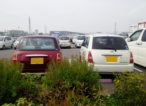 Big parking with two cars in focus