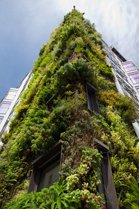 Green wall on a hotel building