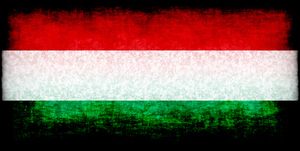 Hungarian flag dark texture
