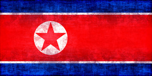 Flag of North Korea with texture overlay