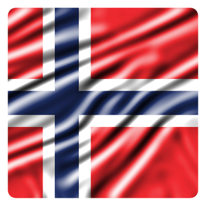 Flag of Norway in a rectangle
