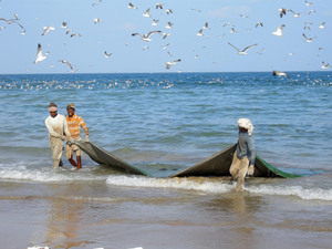 Fishermen pulling out drift nets