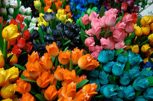Wooden tulips displayed