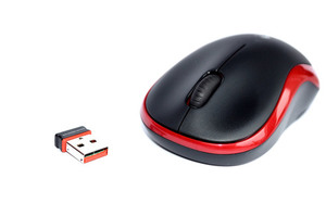 Computer Mouse isolated