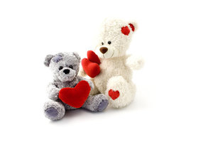 Sweet teddy bears isolated