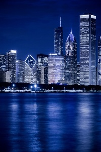 Downtown Chicago night view