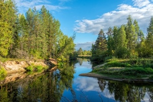 River in Russian taiga