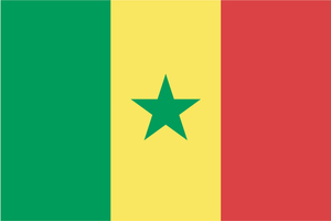Senegal Republic flag