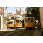 Yellow tram cars