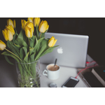 Yellow tulips and laptop
