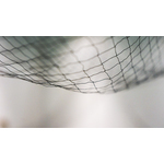 Blurry net