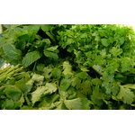 Parsley and mint herbs