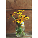 Yellow flowers in a jar