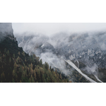 Foggy mountain side with evergreen forest