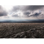 Brecon Beacons field