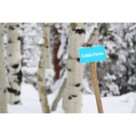 ''Cabin Fever'' sign in snow