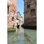 Dirty canals in Venice