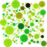 Grunge texture on green dots