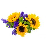 Sunflowers arrangement isolated