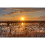 Everglades National Park in the evening
