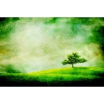 Tree on the grassy field illustration