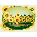 Sunflowers illustration